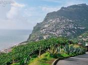 Scenery From Madeira