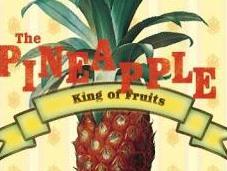 Pen-Pineapple-Apple-Pen