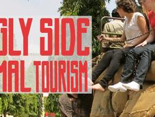 Ugly Side Animal Tourism