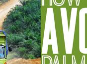 Avoid Palm