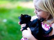 Facts Myths Around Black Cats