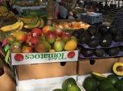 Florida's Oldest Largest Flea Market