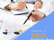 Find Efficiency Your Service Provider