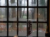 Condensation Causations: Keep Your House Windows from Icing