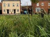 Houses Flood Risk Existing Homes