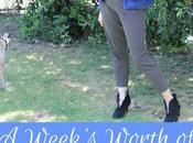Week's Worth Pants Based Office Outfits Inspire