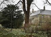 Snowdrops Aconites Little Ponton Hall