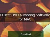 Best Free Paid Authoring Software