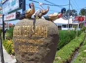 Shoot Bits:Ducks Road Corner