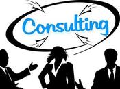 Ingredients Profitable Consulting Business