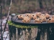 "No-Bake Cookie Bites Dough ""Contraband"" (Gluten-Free)"