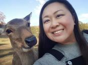 Japan Deer Deers! Nara's Most Famous Residents Nara Park