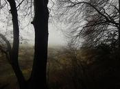 Kingscote Nailsworth Walk