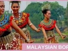 Wildlife Encounters Malaysian Borneo