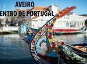 Aveiro Centro Portugal Video