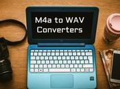 Best Free Paid Converters