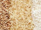Most Rice Producing Countries Entire World