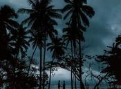 Stunning Alternative Fiji Elopement Middleton