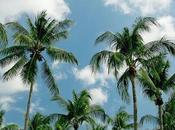 Seven Great Summer Vacation Destinations
