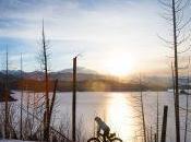 Dreaming Montana