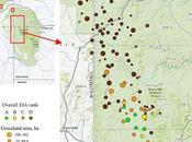 Black Hills Montane Grassland Infographic