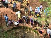Great Rescue Elephant That Fell into Feet Well Coimbatore Kudos