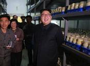 Jong Visits Pyongyang Mushroom Farm
