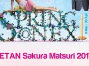 Enjoy Sakura Matsuri This Weekend
