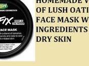 Homemade Version Lush Oatifix Face Mask