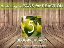 #Celebrating #PawsForReaction #Ontario #PetBlog #Anniversary