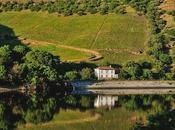 Golden Hour Douro Valley