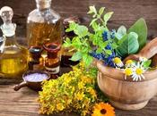 Best Essential Oils Weight Loss (tips Them)