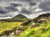 Hike Connemara Leads Beautiful Photography (and Wildlife Surprise)
