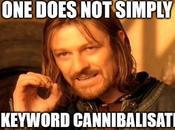 Keyword Cannibalisation