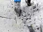 Feds Halt Drilling Rover Pipeline After Massive Spills Destroy Ohio Wetlands