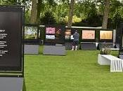 Chelsea Flower Show Less More