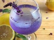 Summer Drinks Chill Enjoy