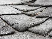 Repair Damaged Roof?