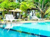 Negombo Will Make Forget Famous Tourist Place Like Paris Bali!