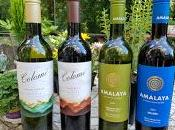 "Latest from ""Wines Altitude"" with Amalaya Wines Bodega Colomé"