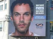 Like Bronx, Grow Beard