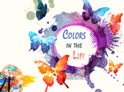 Usages Colors Life Designers