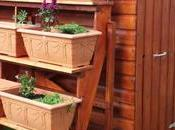 Planter Ideas Everything Need Know