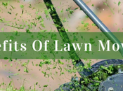 Benefits Lawn Mowing