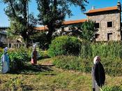 Associação Movimento Terra Solta: Urban Farm Porto