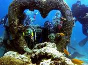 Scuba Diving Mactan: Unraveling Biological Gems Reef