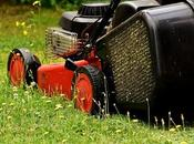 Select Perfect Mower Your Yard Size