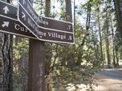 Yosemite's Newest Climbing Stewards