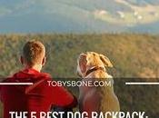 Best Backpack: What Your Dog?