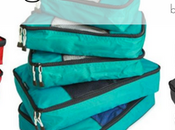 Friday's Find: TravelWise Packing Cube System